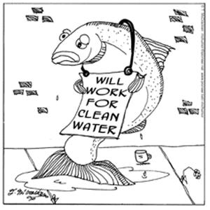 Environmental Reasons